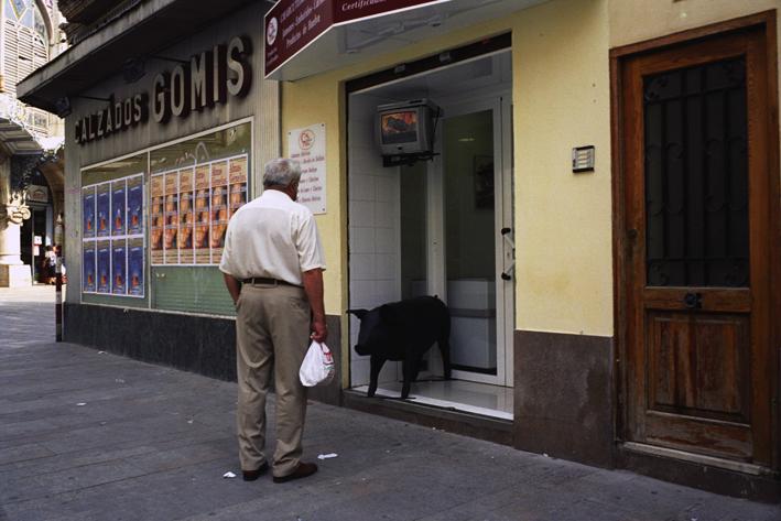 http://www.dennisduijnhouwer.com/files/gimgs/108_valencia02c.jpg