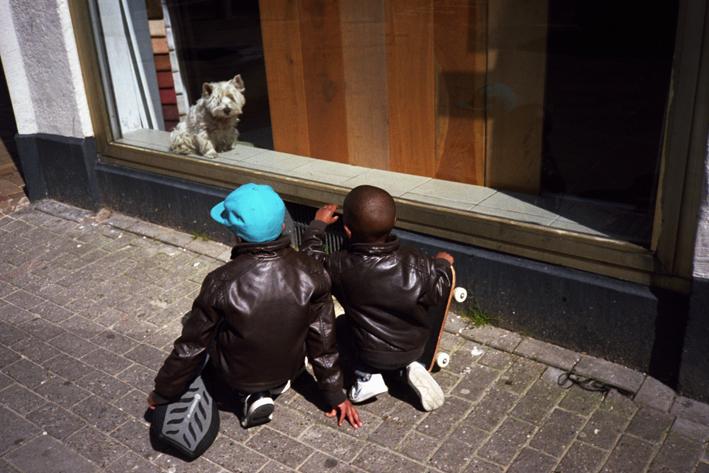 http://www.dennisduijnhouwer.com/files/gimgs/11_jongetjes-hondje02e.jpg