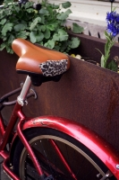 107_like-beasts-fiets01b.jpg