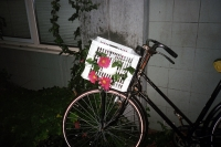 126_fake-flowers-fiets01c.jpg