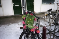 126_never-wither-bike01b.jpg