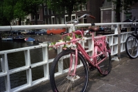 126_never-wither-fiets202b.jpg