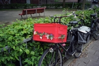 126_never-wither-fiets206b.jpg