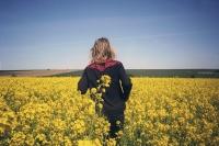 132_douwe-golden-fields01b.jpg