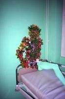 57_57kunst-plant01b.jpg