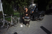 97_rotterdam-doglady01b.jpg